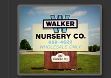 Walker Nursery Company About Us Page